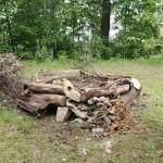 živý kompost